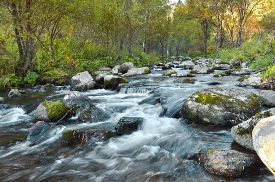 fast_flowing_river_208136
