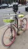 Fun Floral Bike